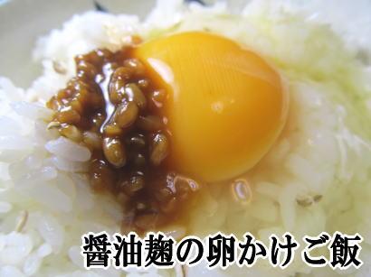 醤油麹の卵かけご飯